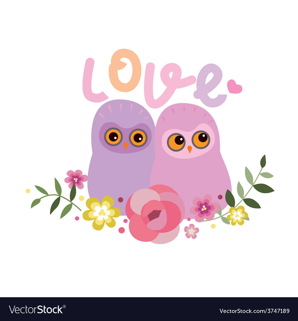 Two owls in love vector