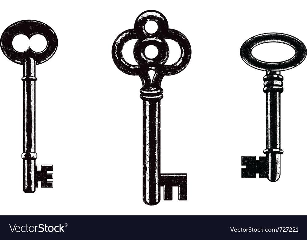 Skeleton keys vector