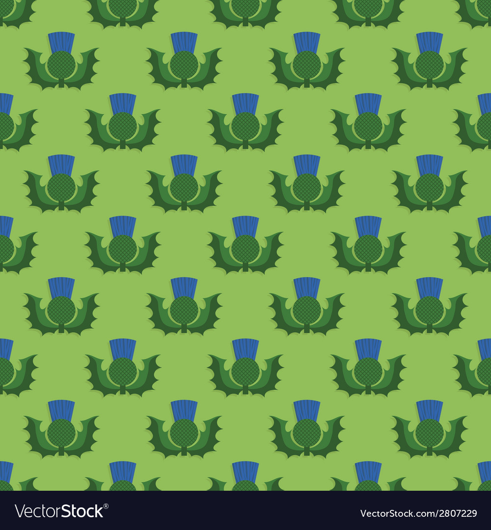 Scotland thistle pattern vector