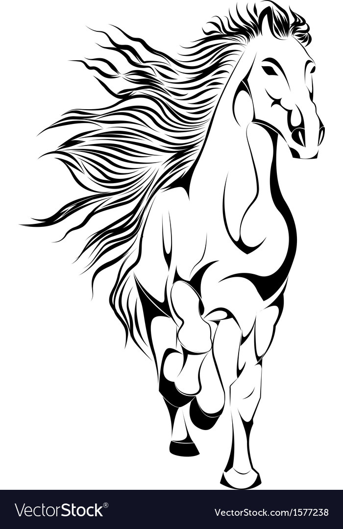 Silhouette of horse in vector