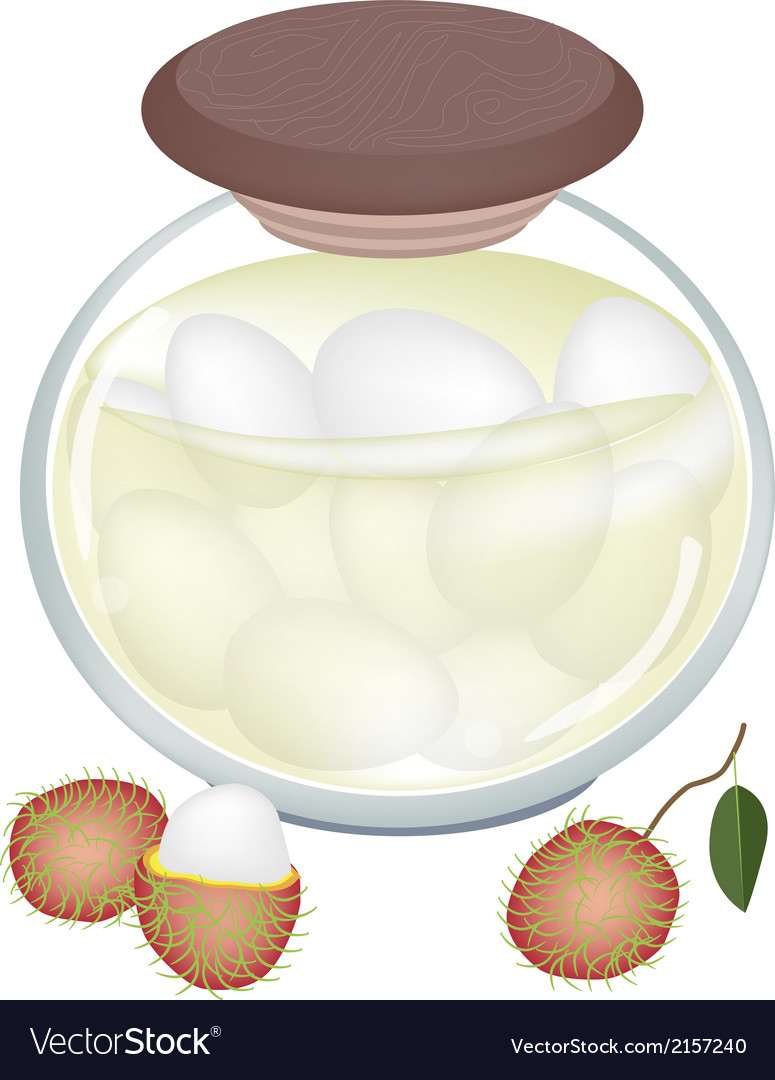 A jar of delicious rambutans in syrup vector