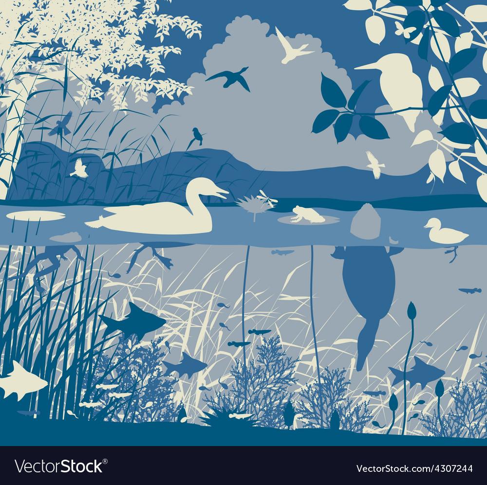 Freshwater wildlife vector
