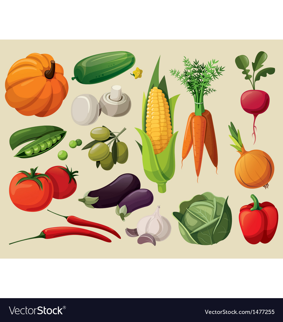 A set of delicious vegetables vector