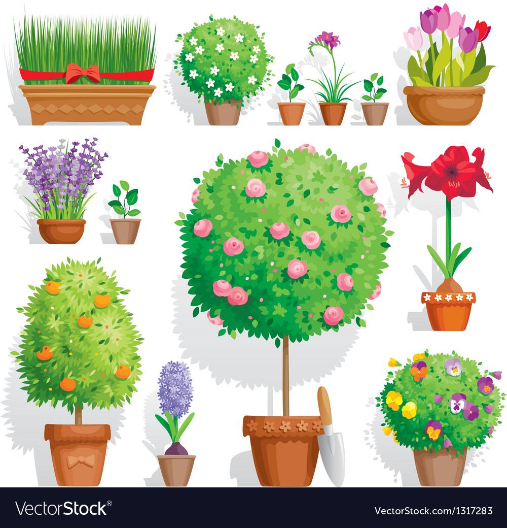 Pot plants set vector