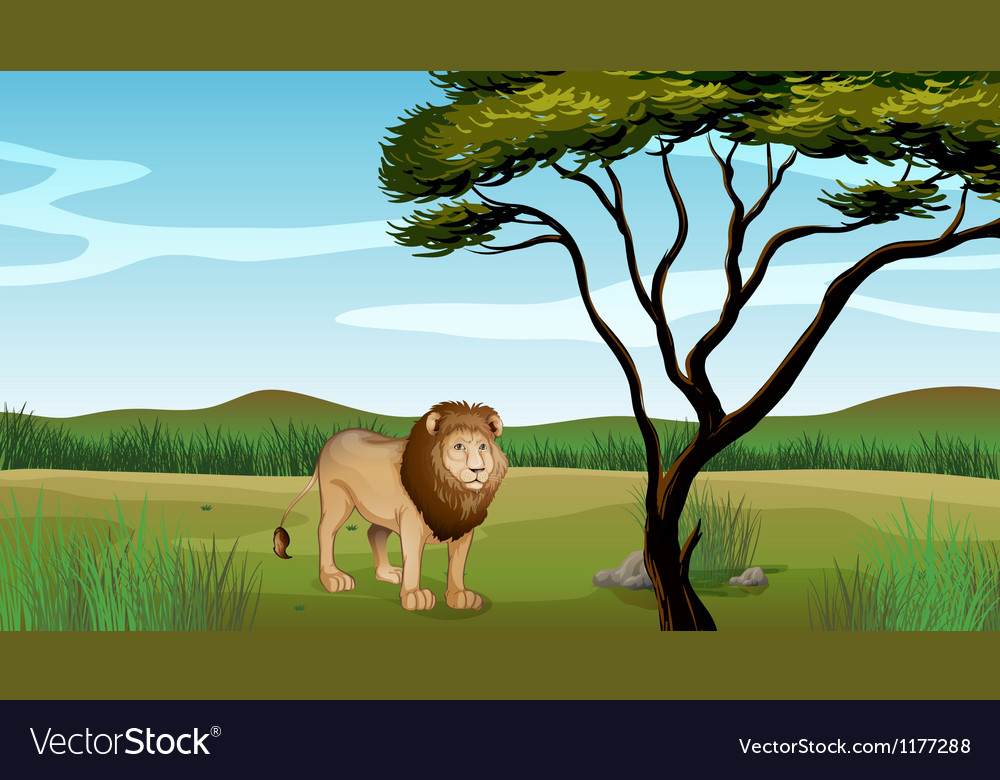 Cartoon lion scenery vector