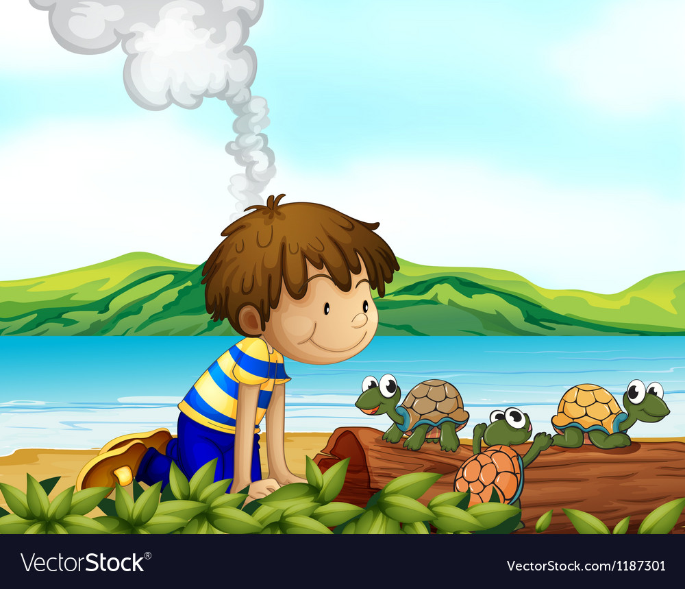 A boy watching the three turtles vector
