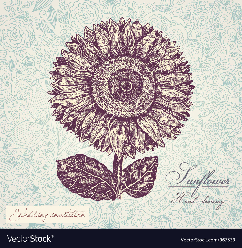 Sunflower invitation background vector