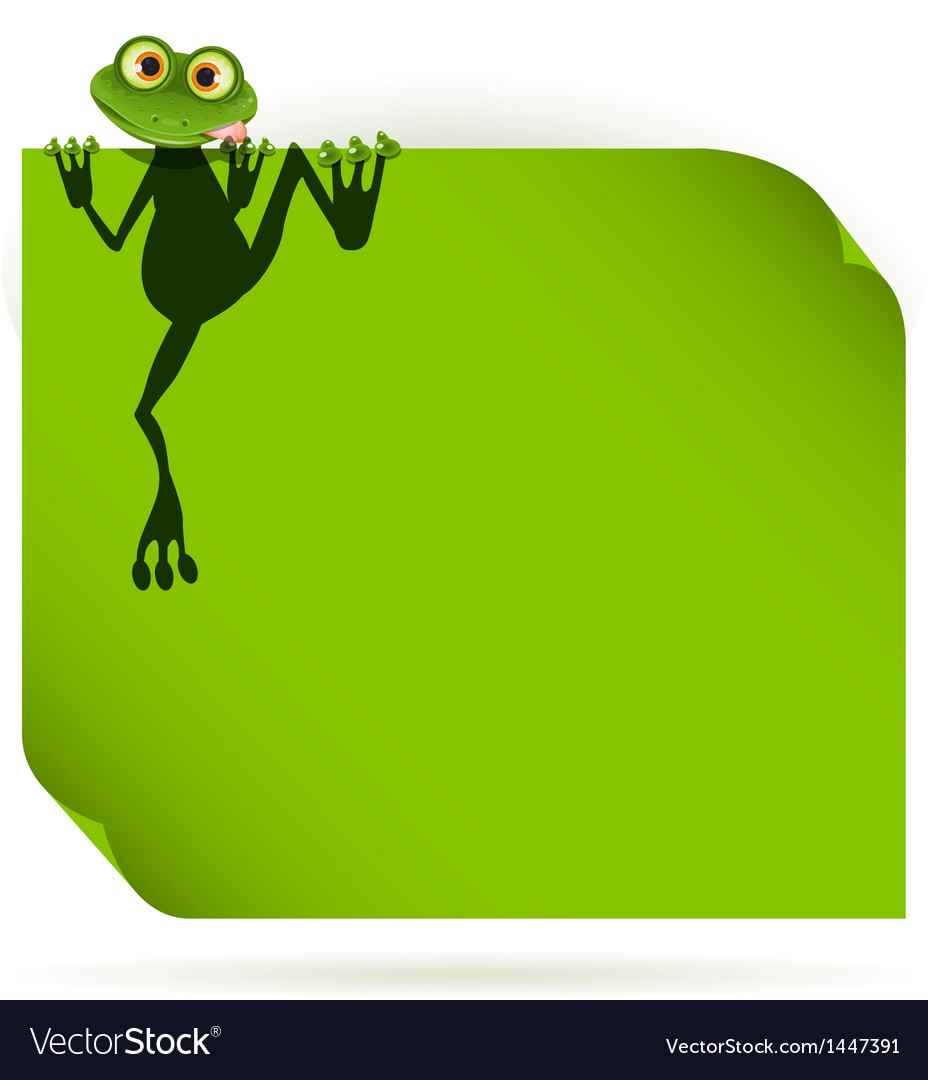 Frog on a green leaf vector