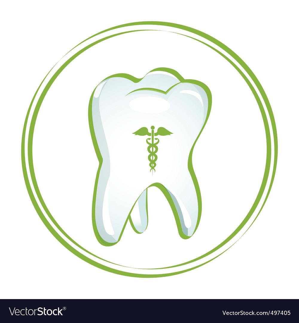 Healthy teeth vector