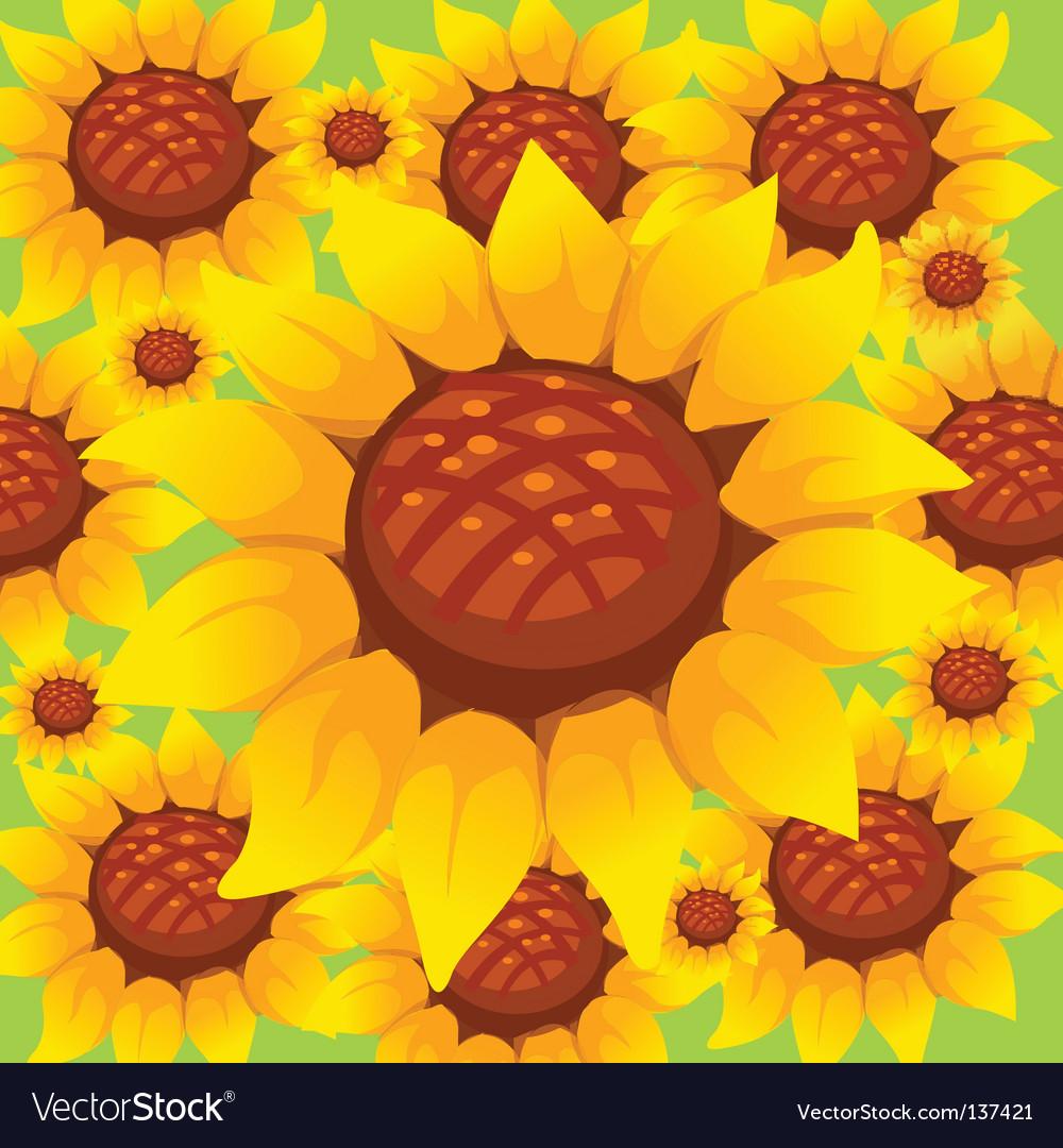 Sunflower pattern vector