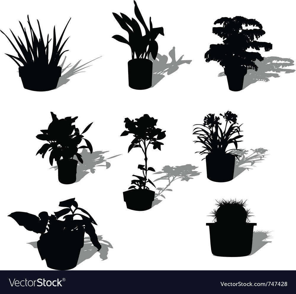 Potted plant silhouettes vector