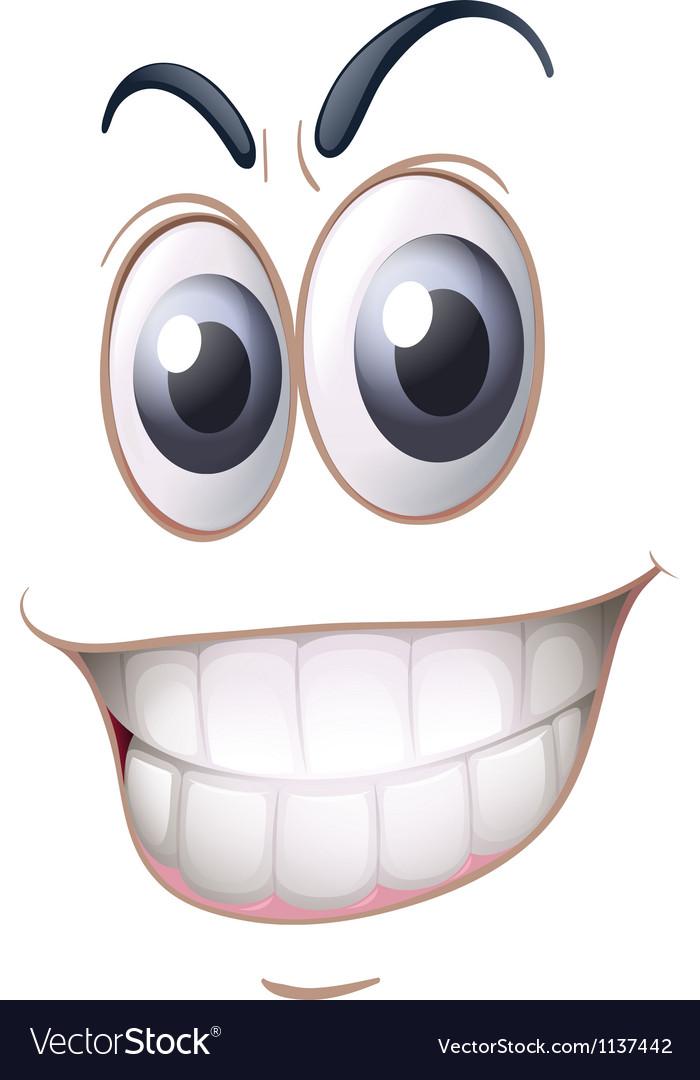 A face vector