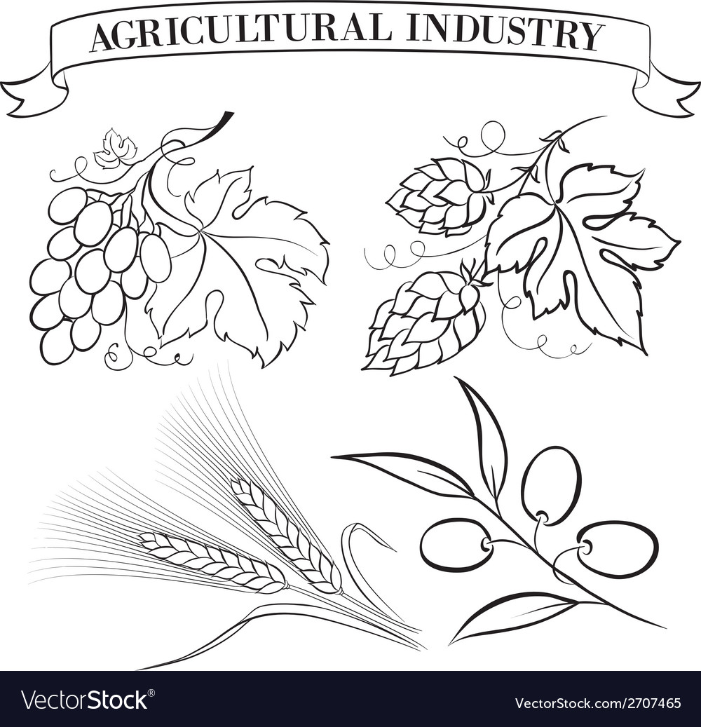 Set of emblems and labels vector
