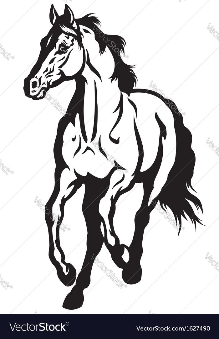 Running horse black white vector