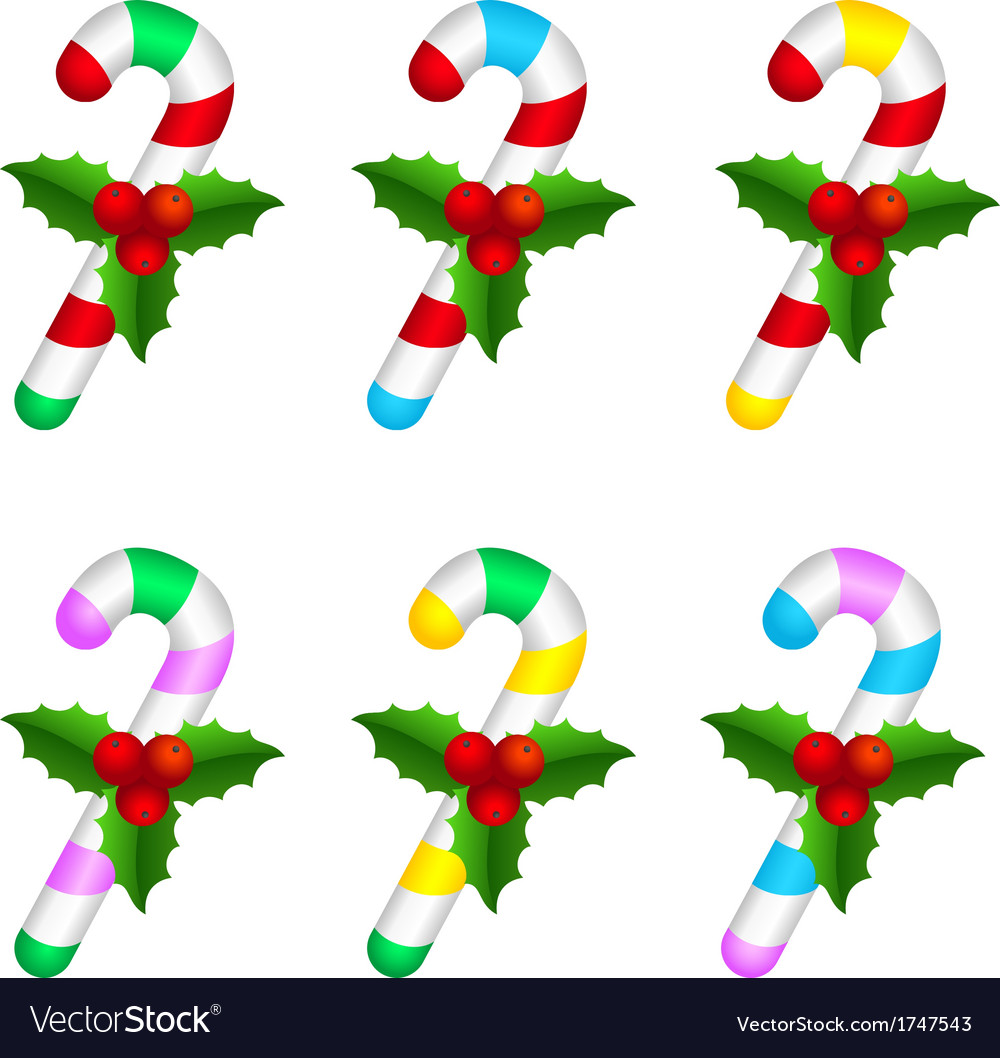 Colourful candy canes with holly berry vector