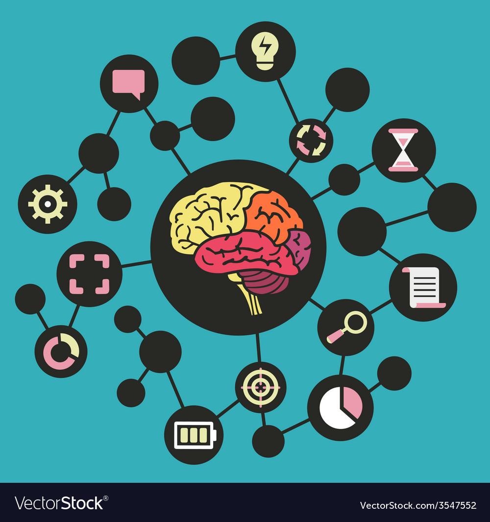 Human resources of brain vector