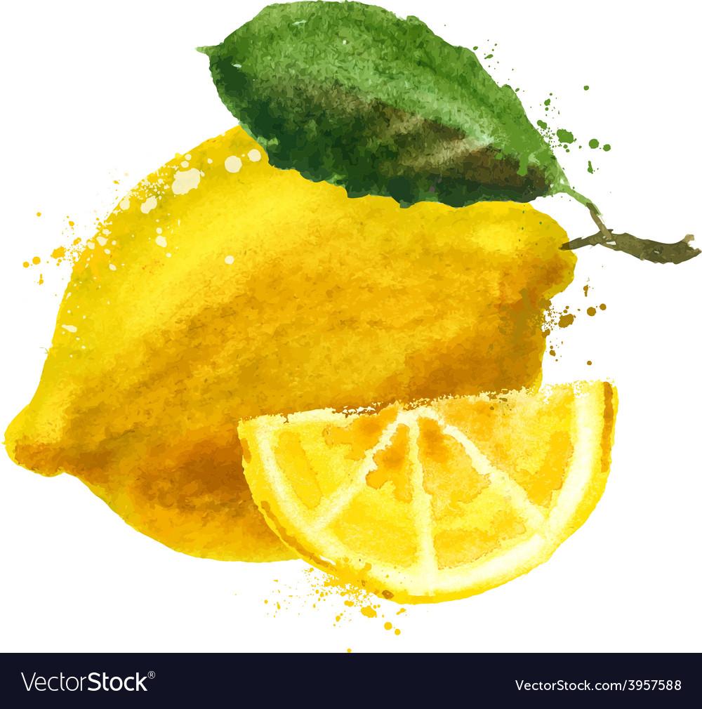 Fruit logo design template food or lemon vector