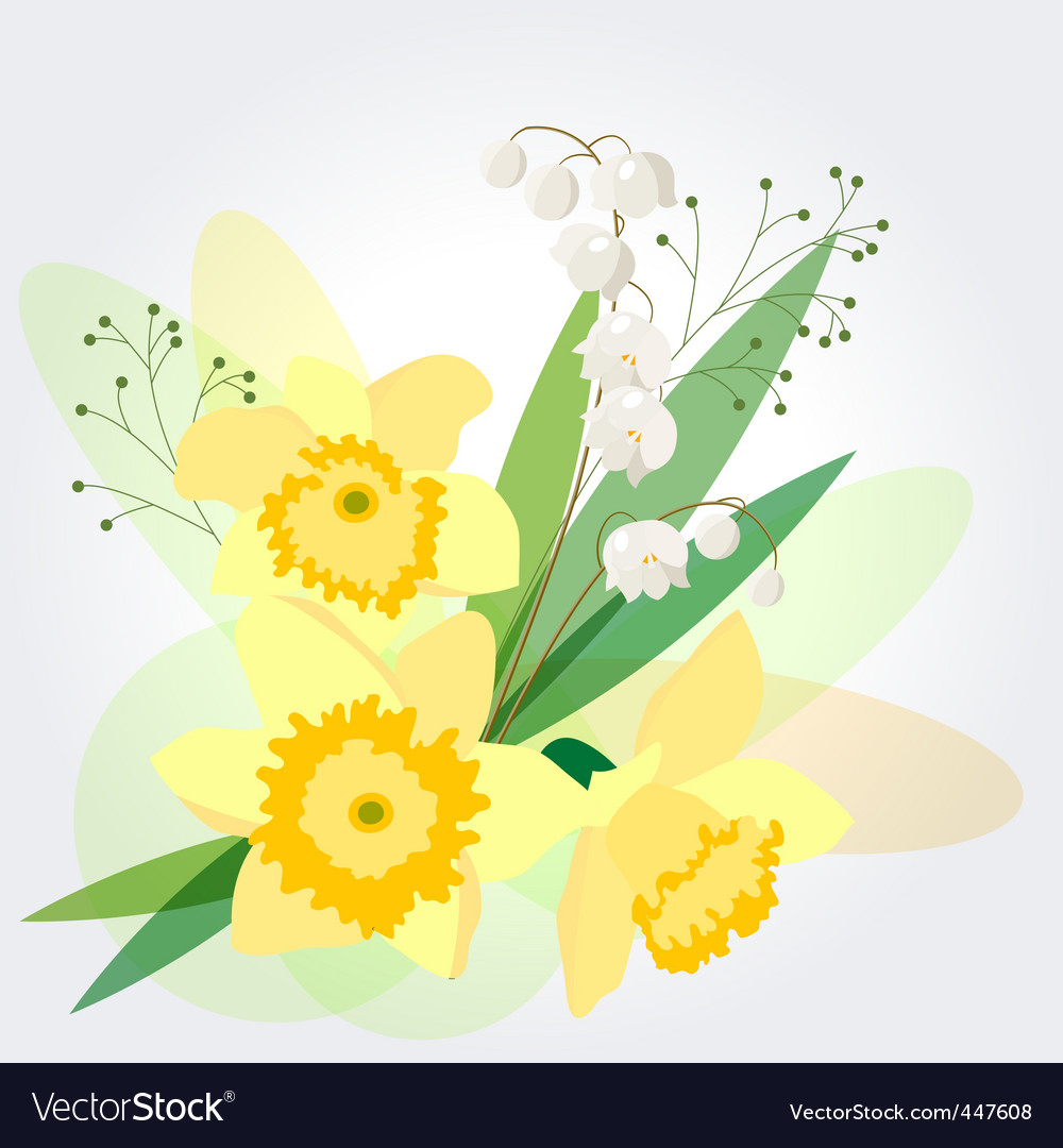 Floral background with daffodils vector