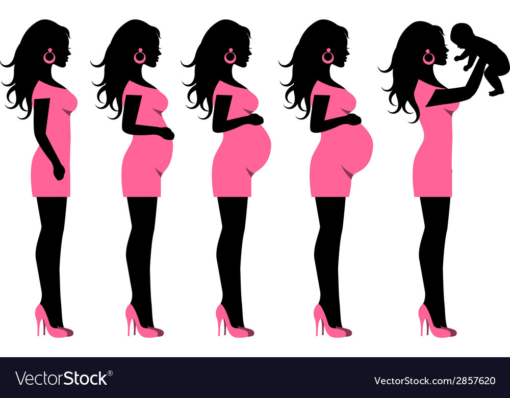Silhouettes in profile and a pregnant woman who ha vector
