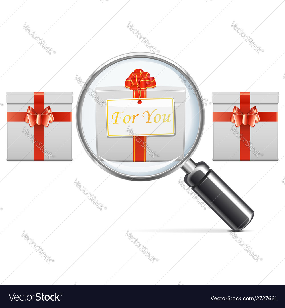 Gift with lens vector