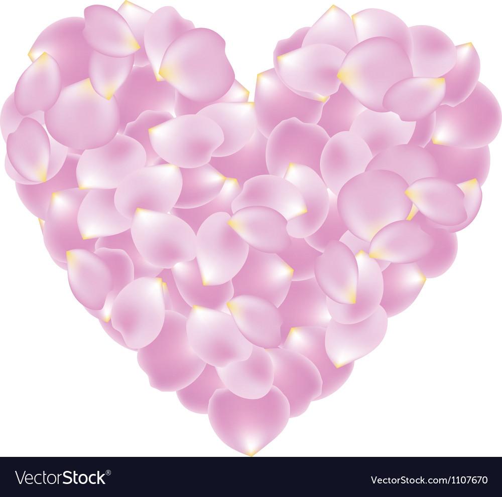 Petal shaped heart vector