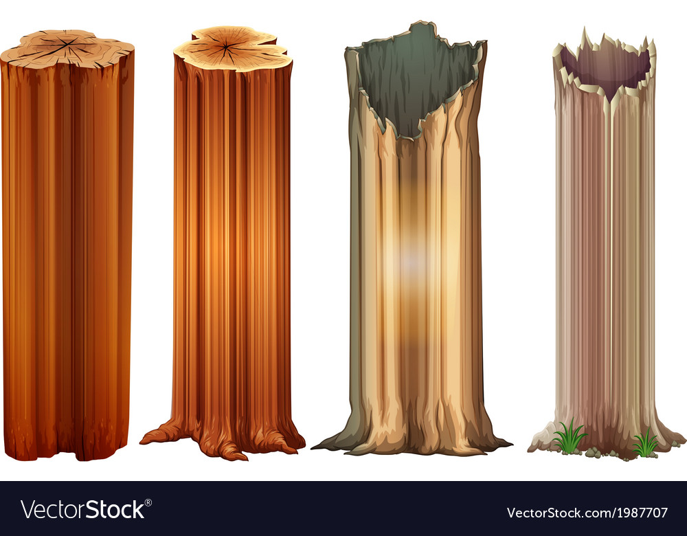 Growing tree stumps vector