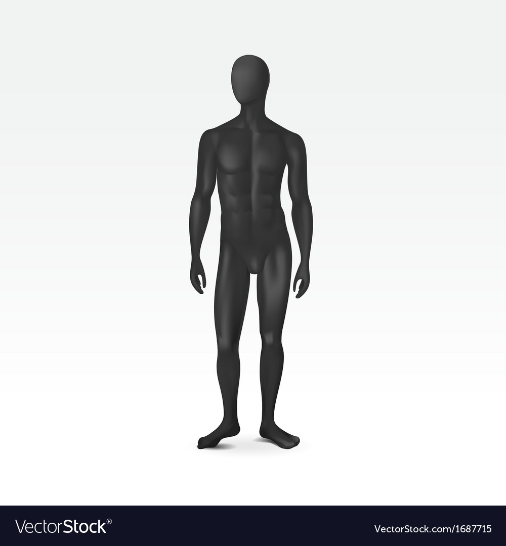 Isolated male mannequin vector