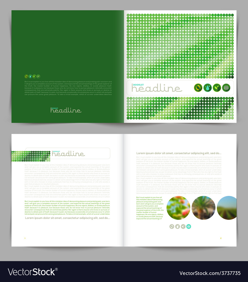 Template booklet design cover and inside pages vector
