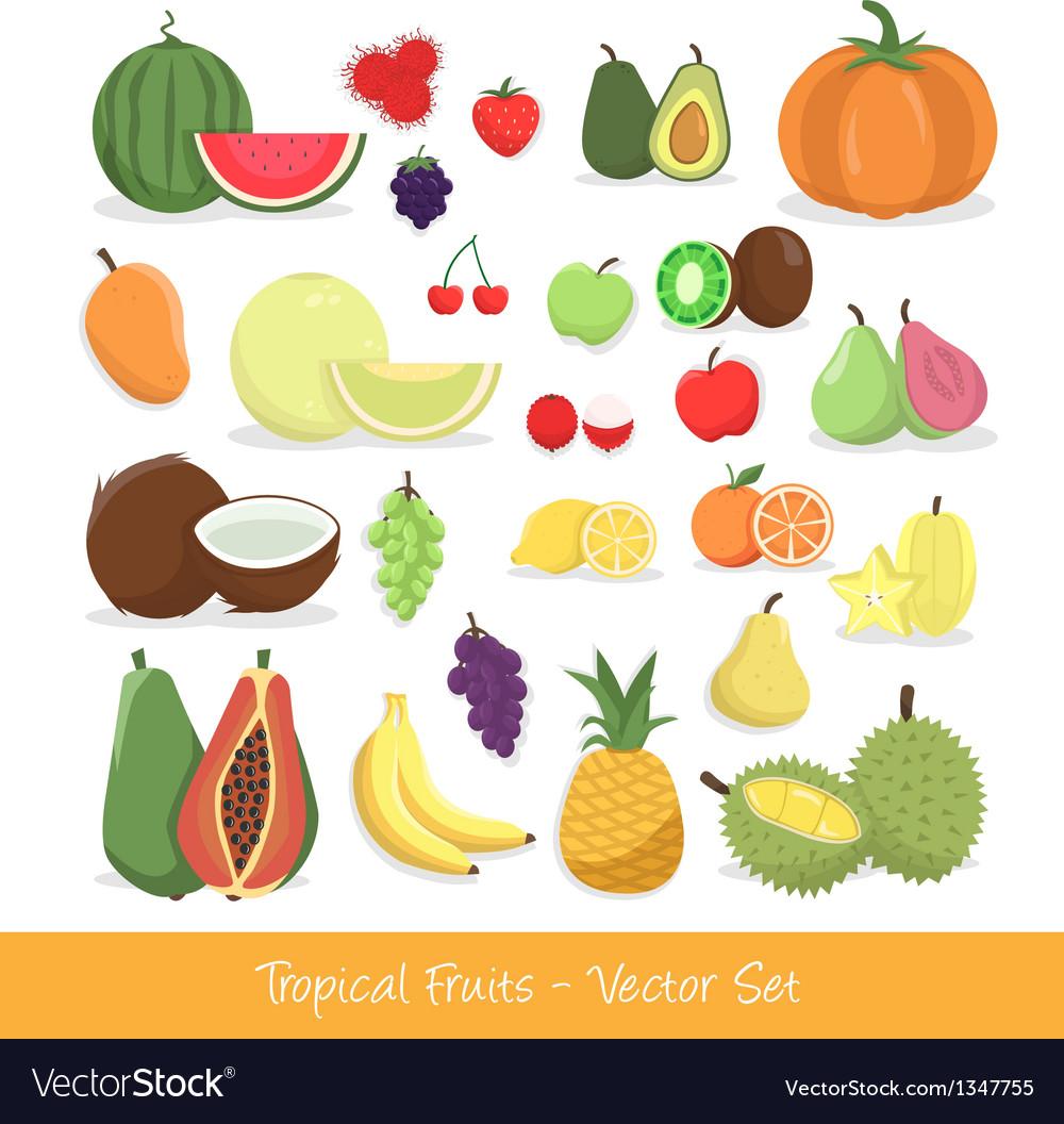 Tropical fruit set vector