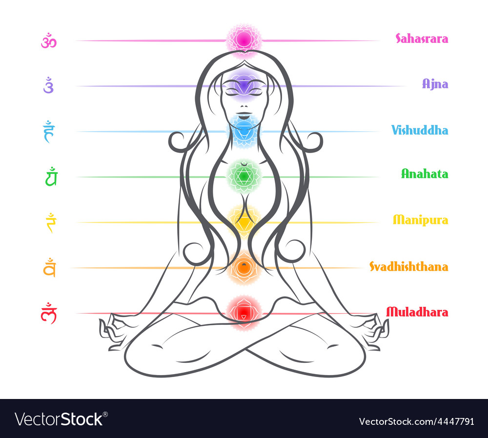 Seven chakras on body woman silhouette vector