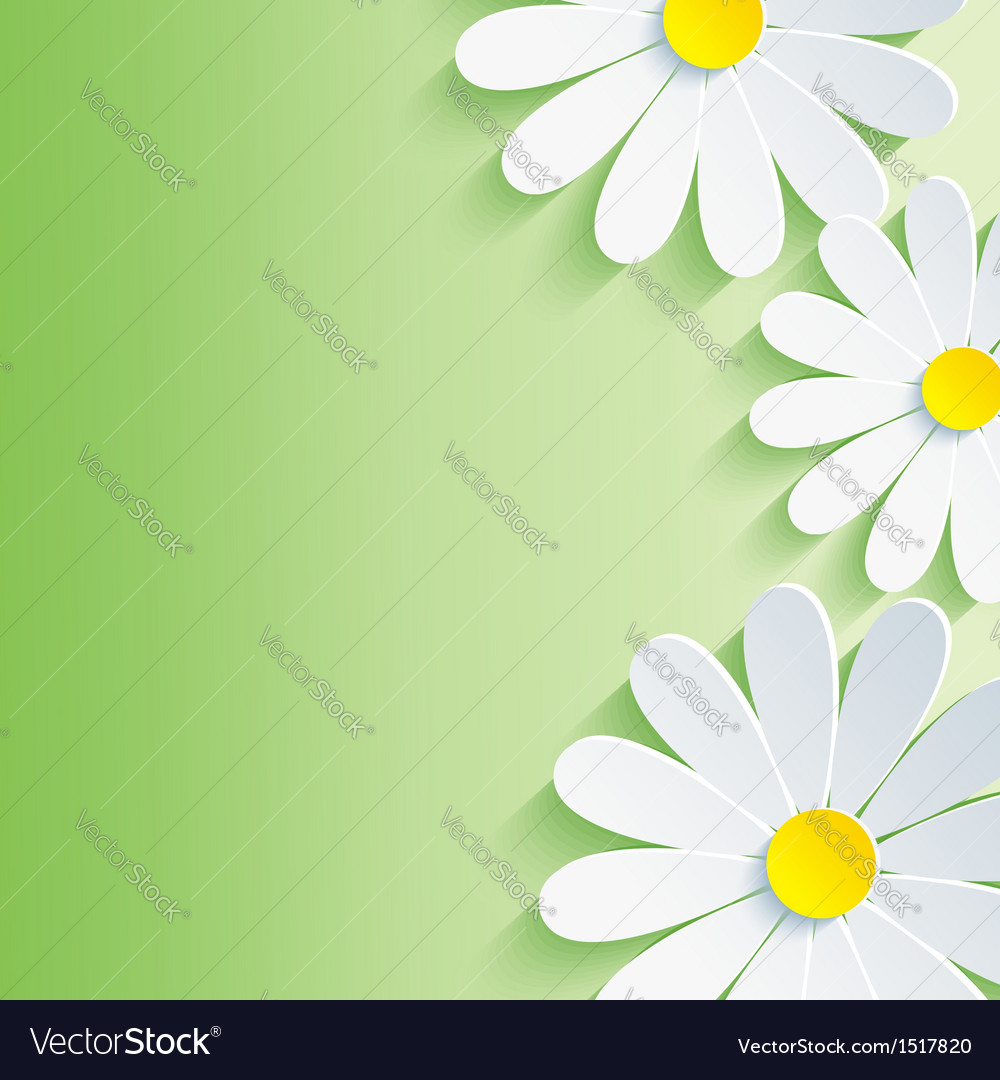 Spring abstract background 3d flower vector