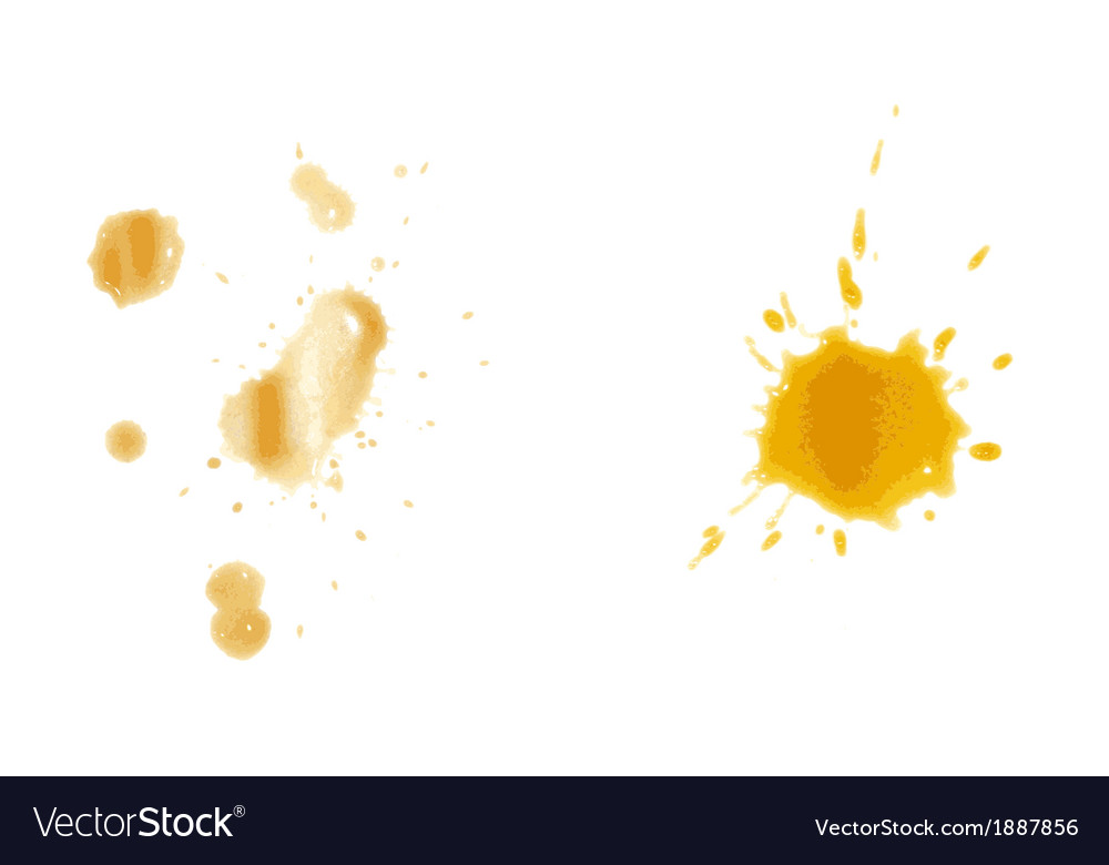 Coffee stain on paper background vector