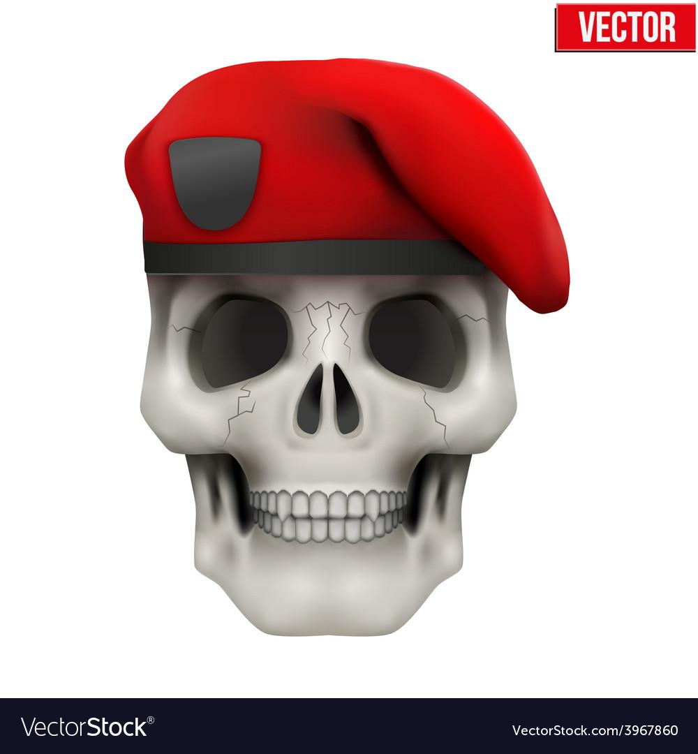 Human skull with military maroon beret vector