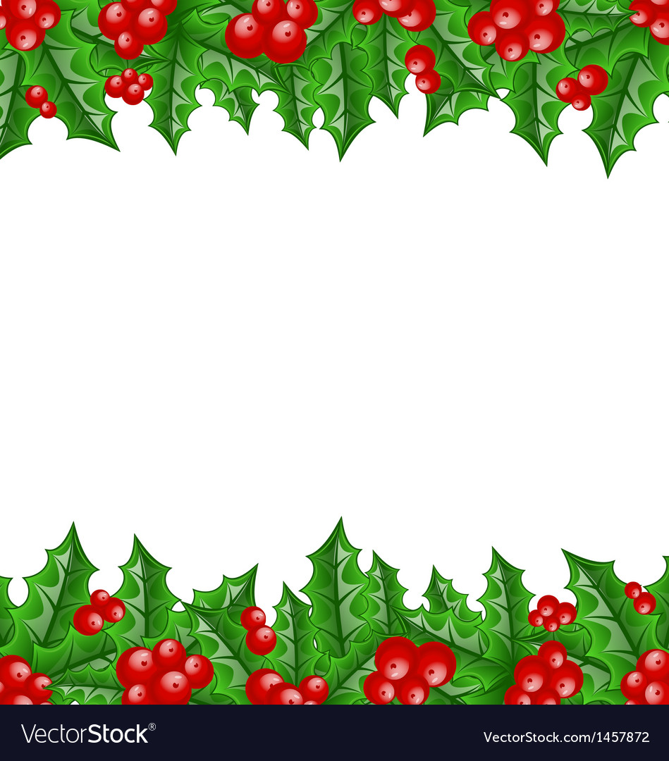 Christmas decoration holly berry branches vector
