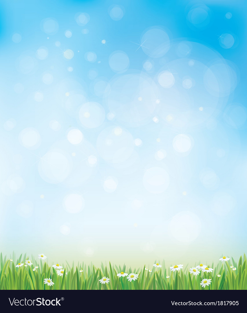 Sky grass background vector