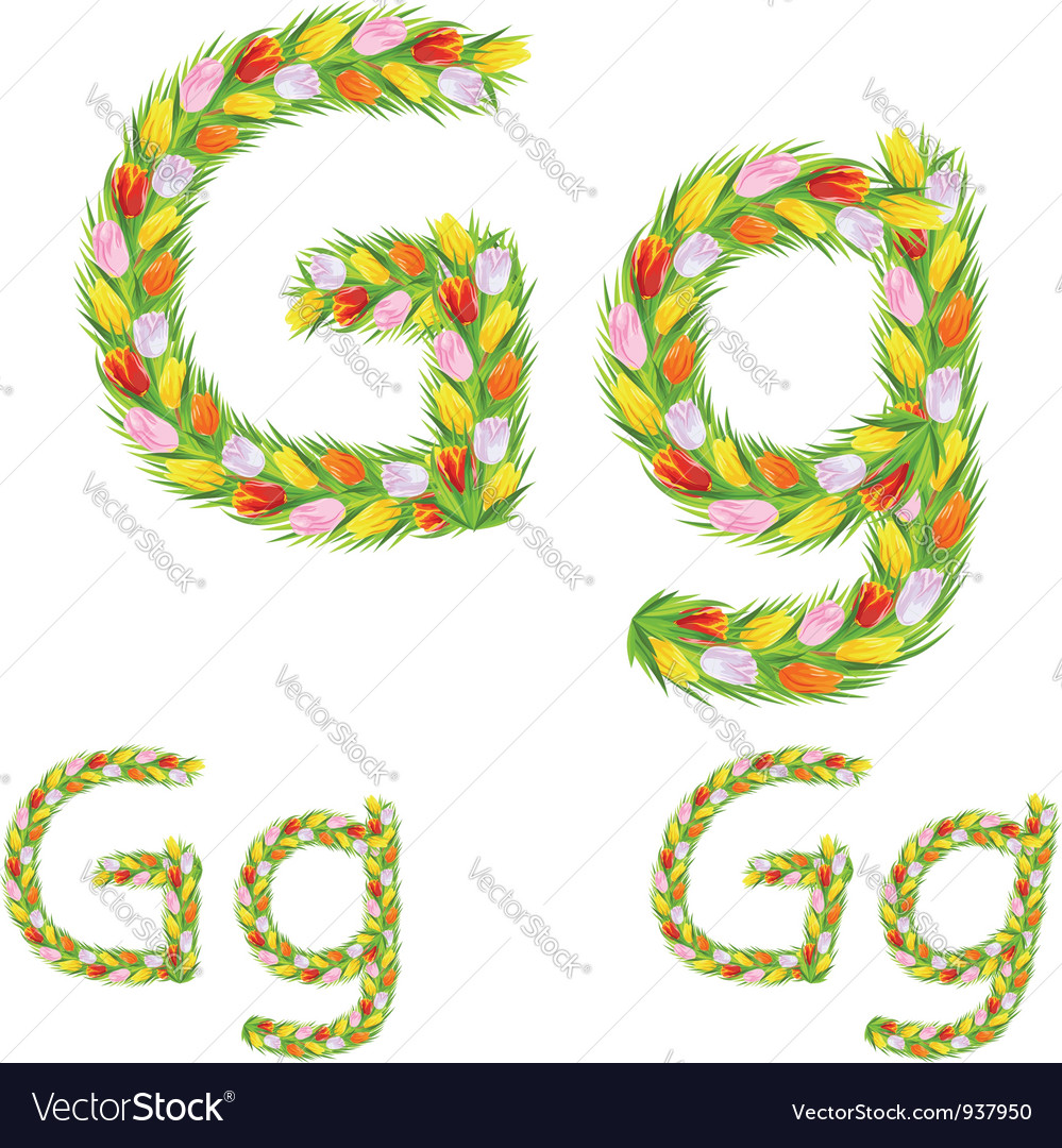 Font type letter g made from flower tulip vector