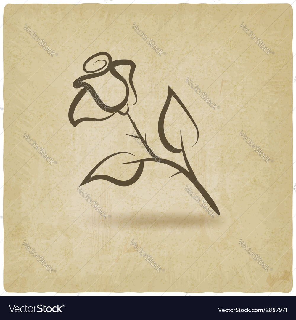 Rose flower symbol vector
