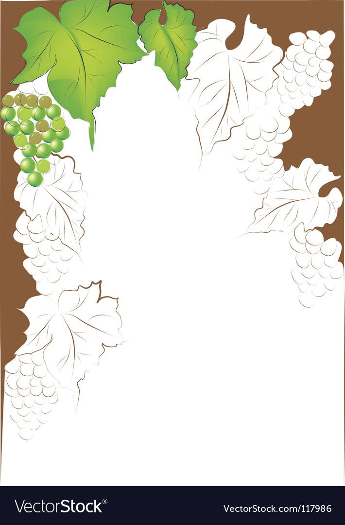 Grapevine border vector