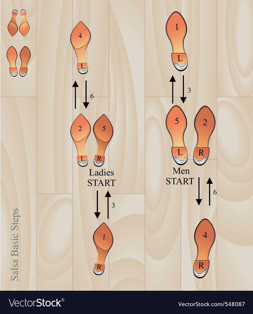 Salsa basic steps vector