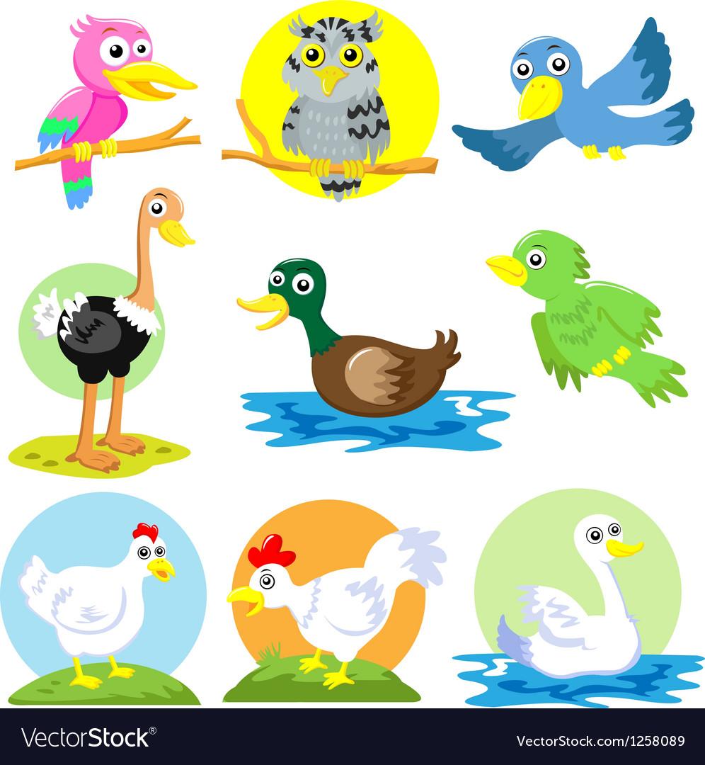 Cartoon birds poultry set vector