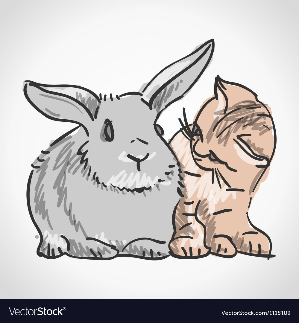 Cat and rabbit vector