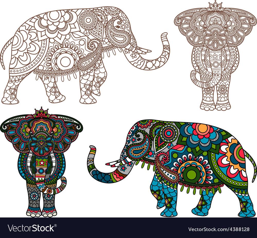 Indian elephant vector