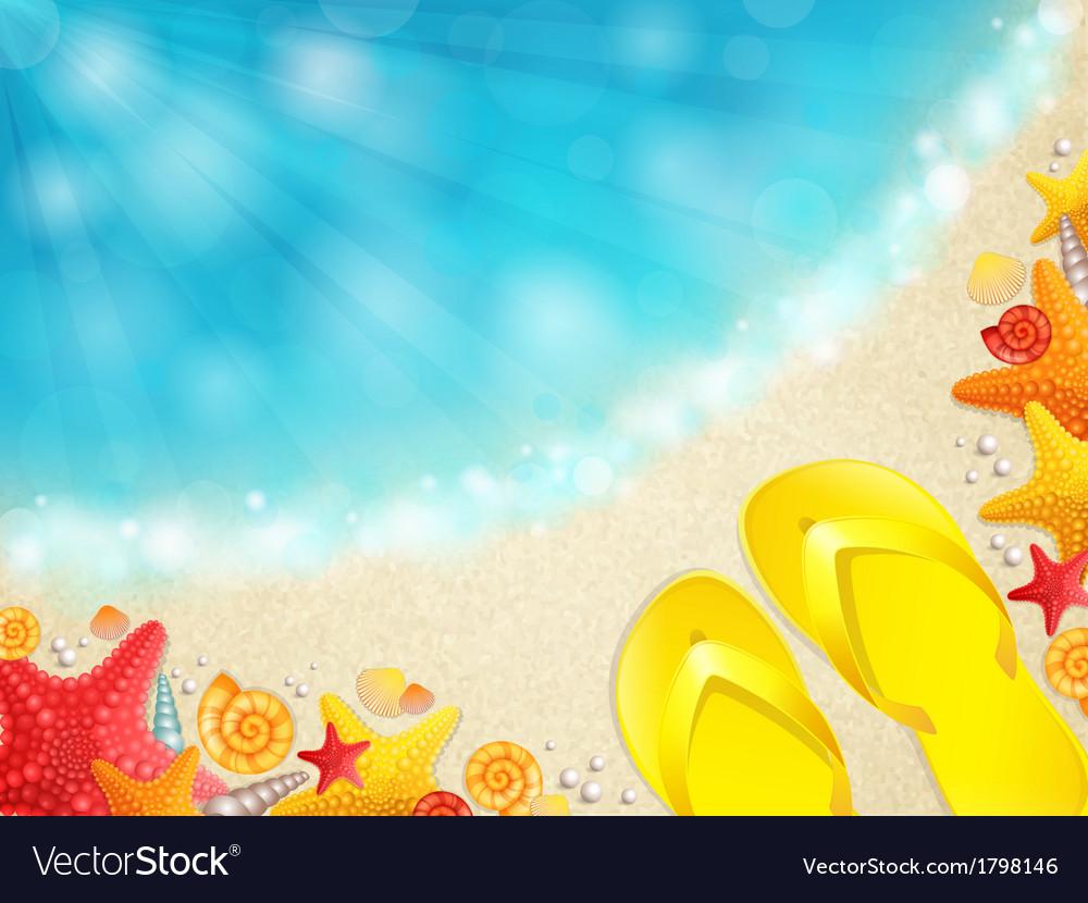 Beach with shells vector