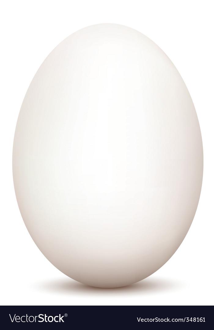 An egg vector