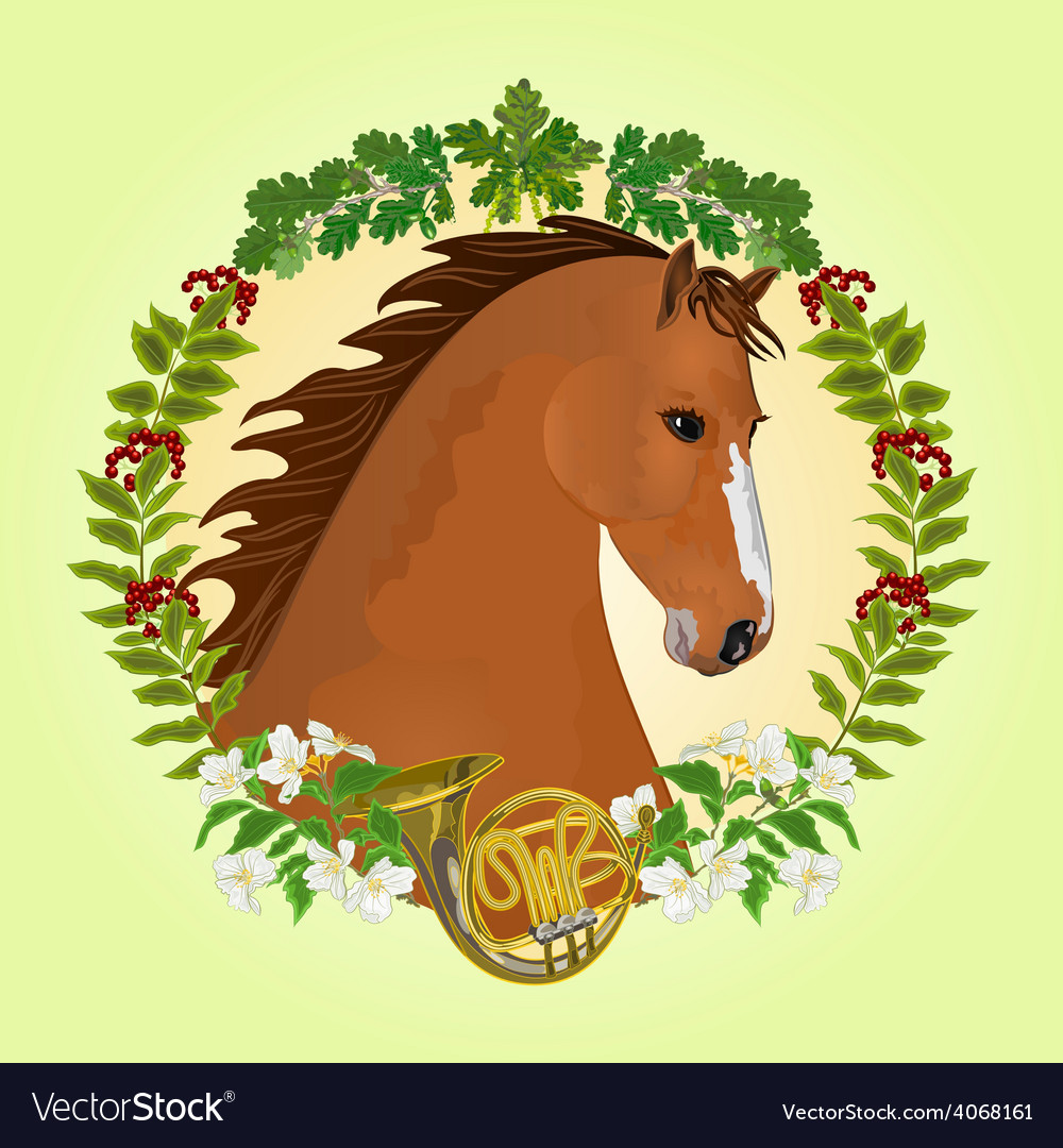 Chestnut horse head of stallion vector