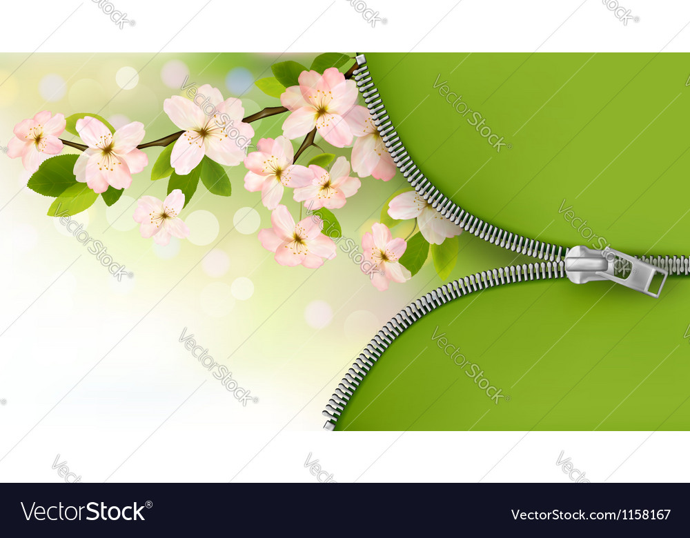 Nature background with blossoming tree brunch and vector