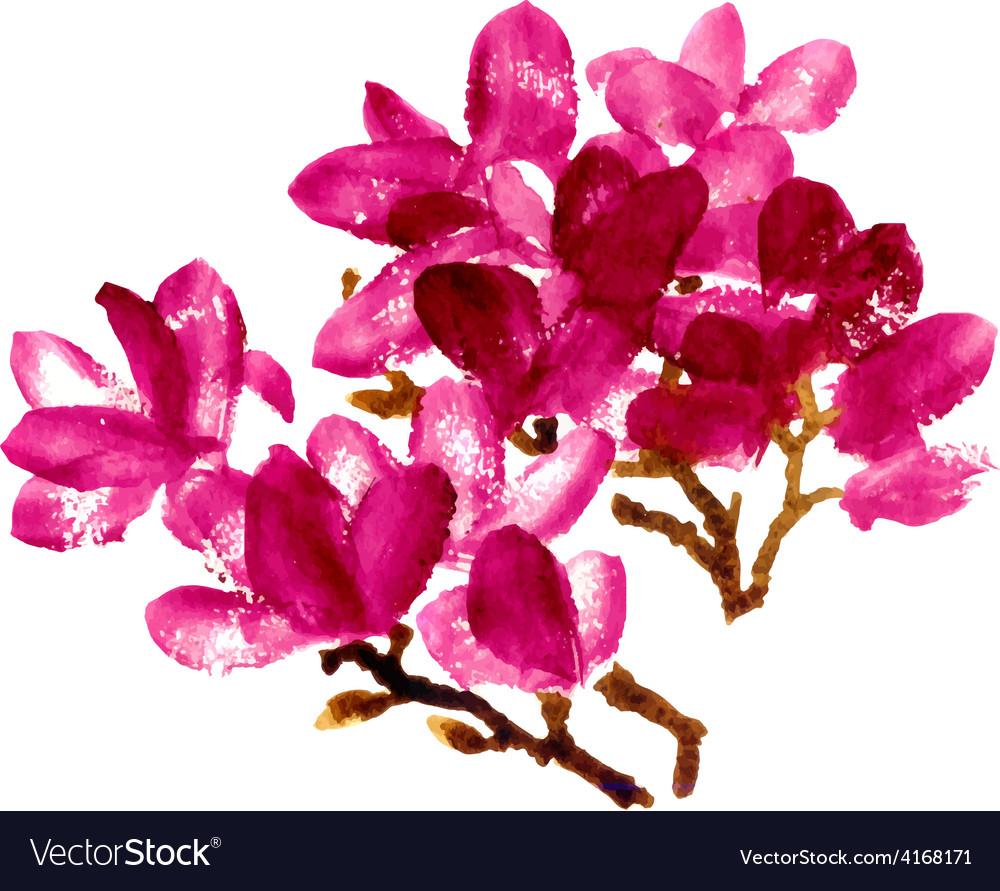 Red watercolor magnolia vector
