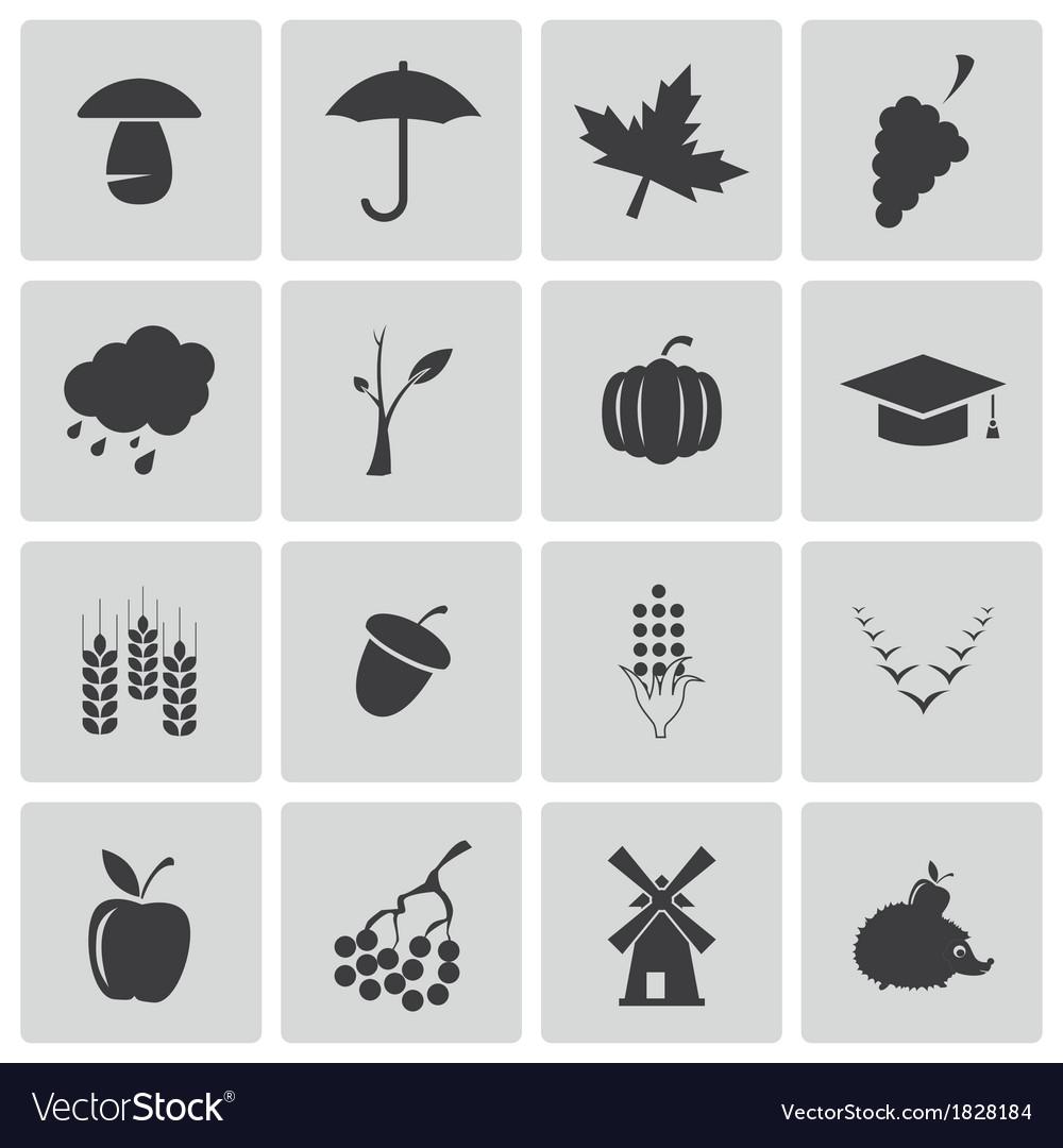 Black autumn icons set vector