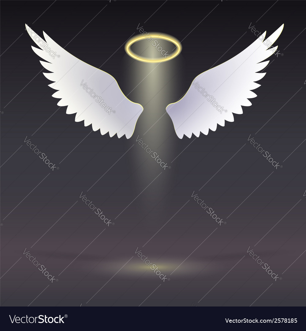 Wings and golden halo vector