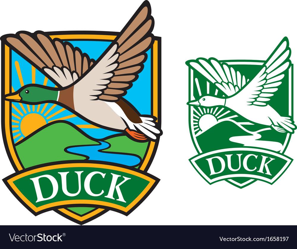 Mallard duck flying emblem vector